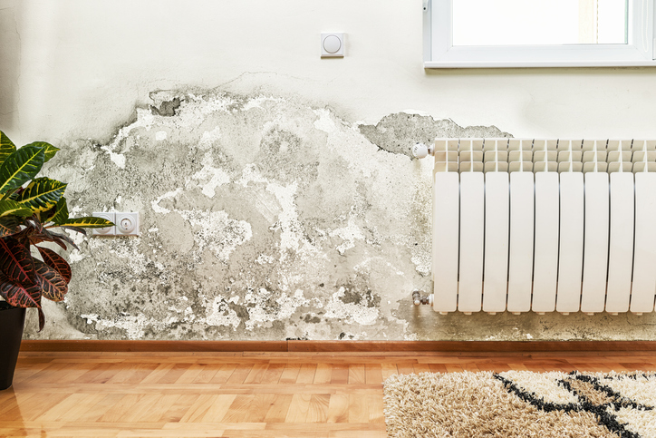 Image of damage caused by damp on a wall in modern house