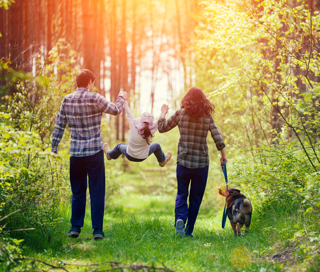 Image of happy family walking with dog in the forest