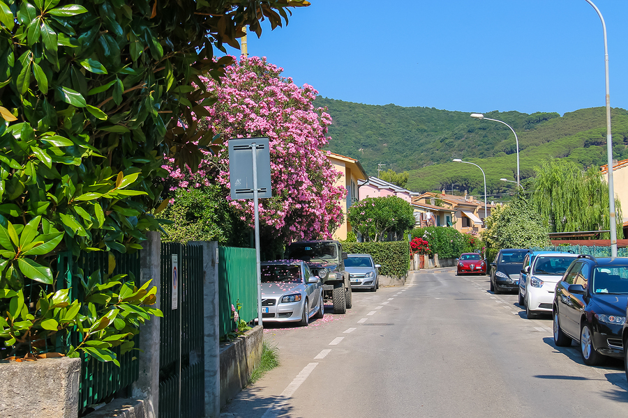 Narrow Street Of Small Picturesque Town Marciana Marina On Elba