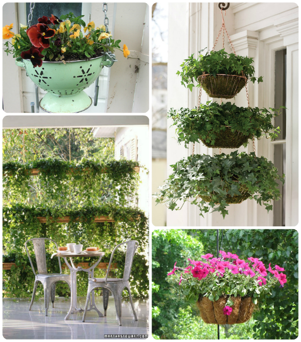 Hanging Flower and plant ideas