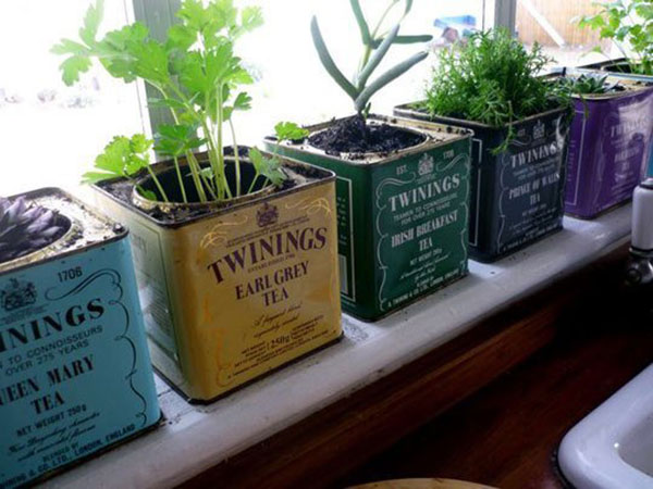 Homes.com-Recycled-Containers-Gardening