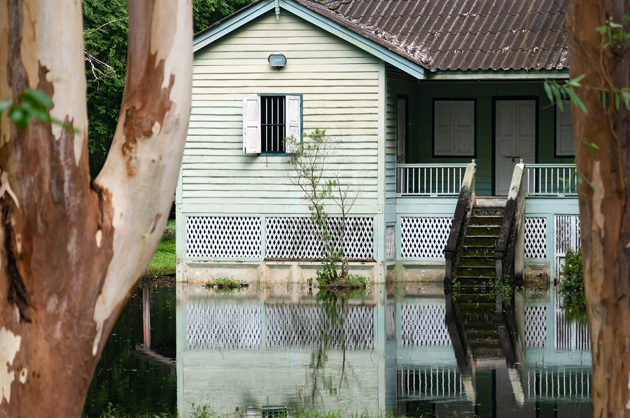 Old wooden abandoned house in a jungle with flooded water from the lake