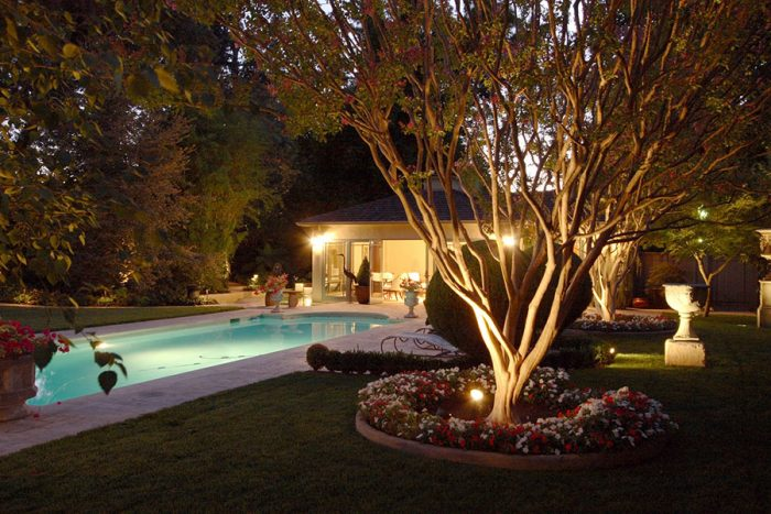 A view of a well-lit backyard.